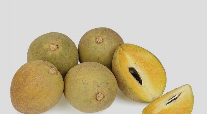 Eating Chikoo (Sapota) Fruit during Pregnancy
