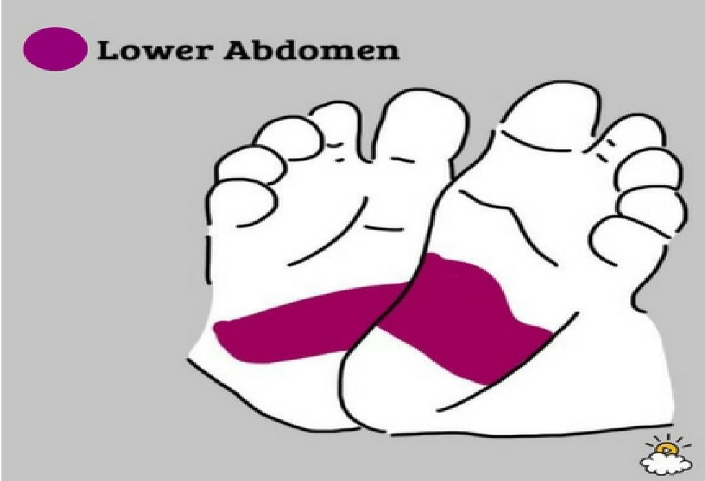Lower Abdomen