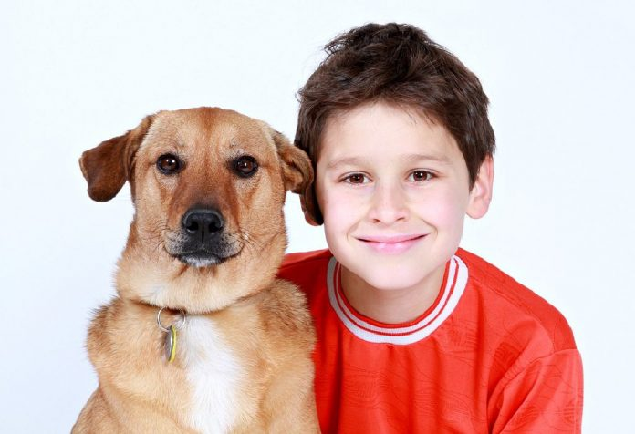 how keeping a pet can build empathy in your child
