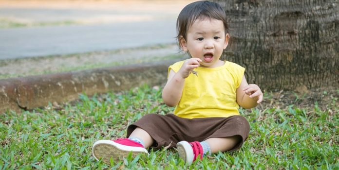 PICA - Causes & Remedies For Nutritional Deficiency In Babies