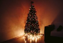27 Unique Christmas Tree Decoration Themes