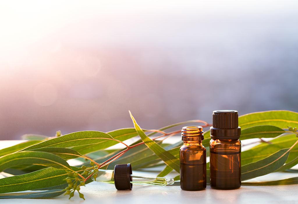 Using Eucalyptus Oil during Pregnancy: Benefits
