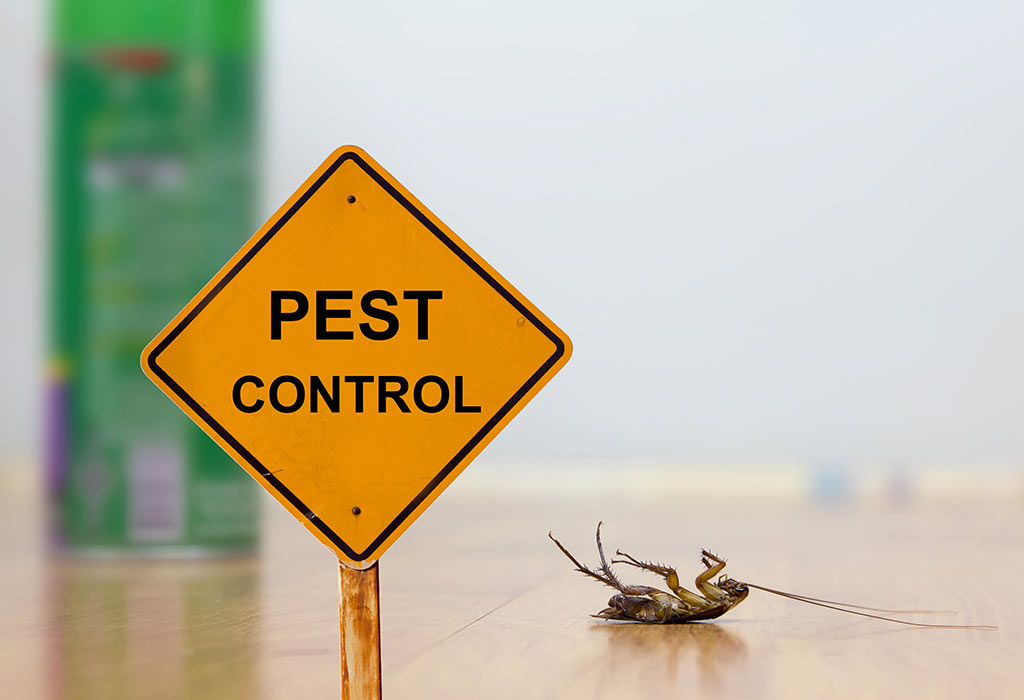 Pest Control and Baby Around - Safety, Risks & Essential Tips