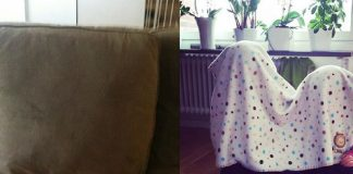 Little Kids Who Think They Are Hide and Seek Champions