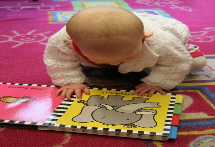 Picture Pointing and Identification Skills in Toddler