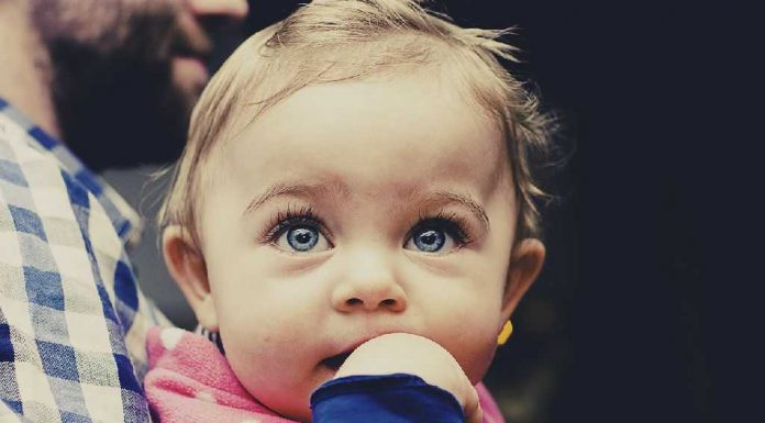 Teaching Your Toddler To Ask Simple Questions