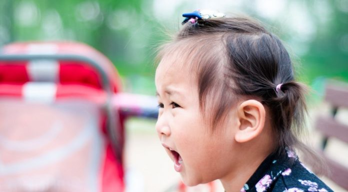 Sound Words and Substitute Pronunciation in Toddlers