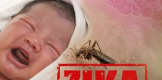 zika virus infection in children