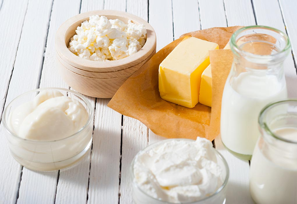 Fermented Milk Products