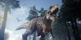 Interesting Dinosaur Facts for Kids