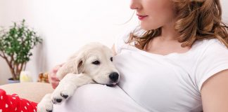 Keeping Pets in Pregnancy - Is It Safe?