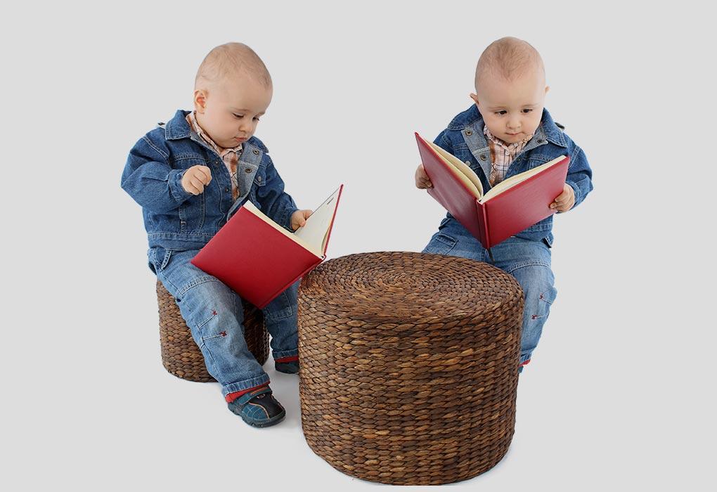 जुड़वां बच्चों की किताबें