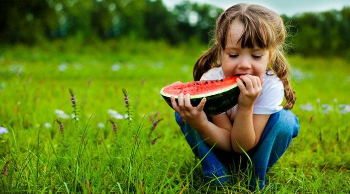 common food and nutrition concerns for your child