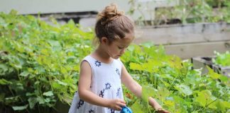 encouraging your child to become a nature lover