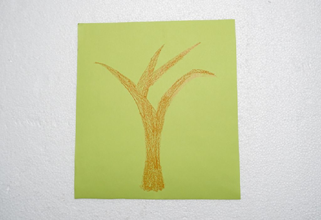 draw tree trunk