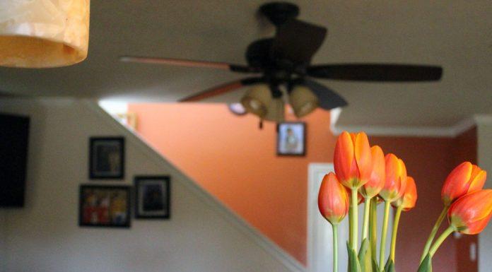Flower Power! 8 Decor Ideas That Need No Vase