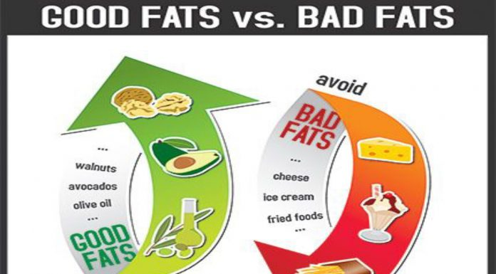 The Basics of Good Fat and Bad Fat