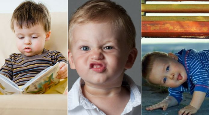 What is Your Toddler's Personality Type? Find Out With These 3 Tricks!