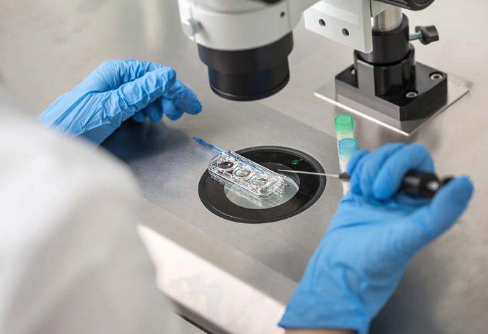 IUI (Intrauterine Insemination ) vs IVF (In Vitro Fertilization)