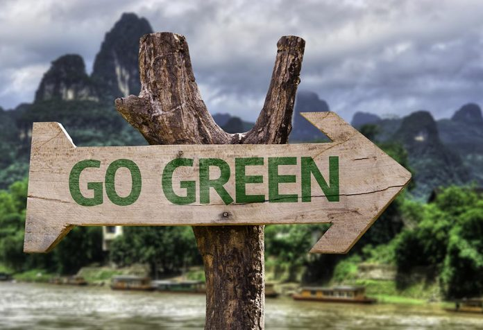 5 Eco-friendly Habits You Can Follow to Go Green This Winter Season