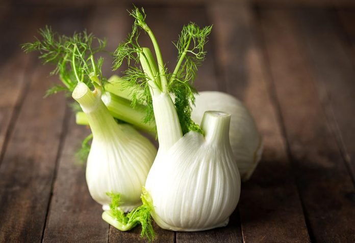 Using Fennel While Breastfeeding - Does it Increase Milk Supply?