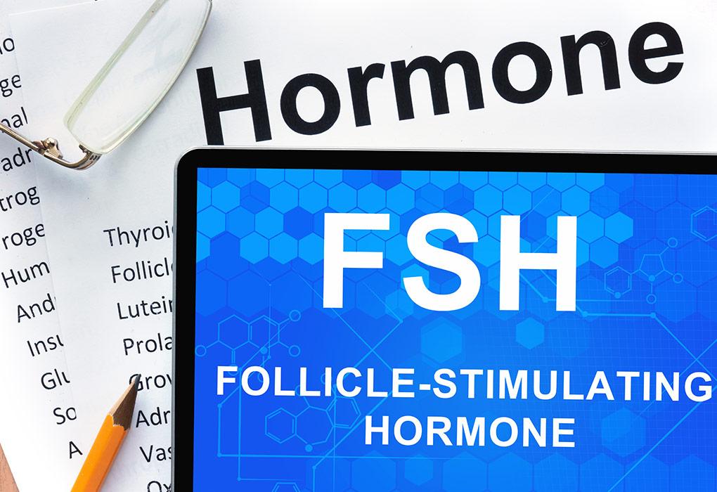 FSH Level during Pregnancy