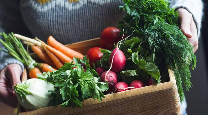 Healthy Vegetables You Should Eat This Winter