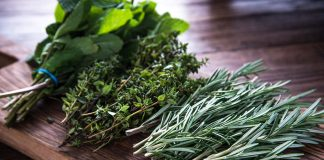 Safe Herbs for Babies and Kids - When and How to Use