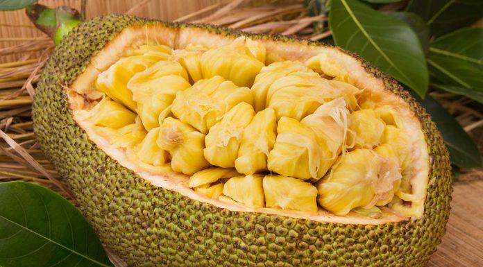 is eating jackfruit safe during breastfeeding
