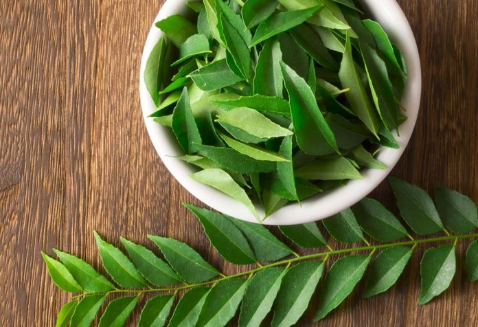 20 Incredible Benefits of Curry Leaves (Kadi Patta) for Hair and Health
