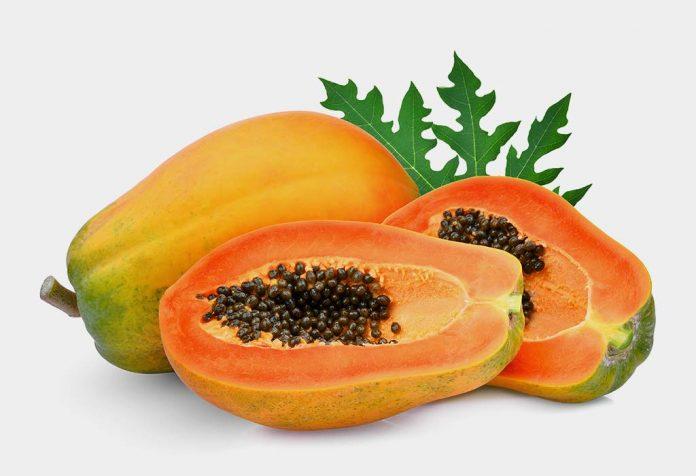 Can Papaya Leaves Fight Dengue?