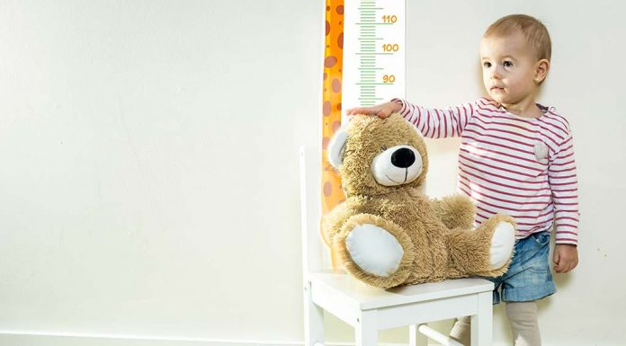 Your Toddler's Average Weight and Height – From 12 to 24 Months
