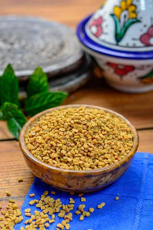 Fenugreek Seeds for Cholesterol