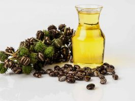 31 Uses of Castor Oil for Good Health and Beauty