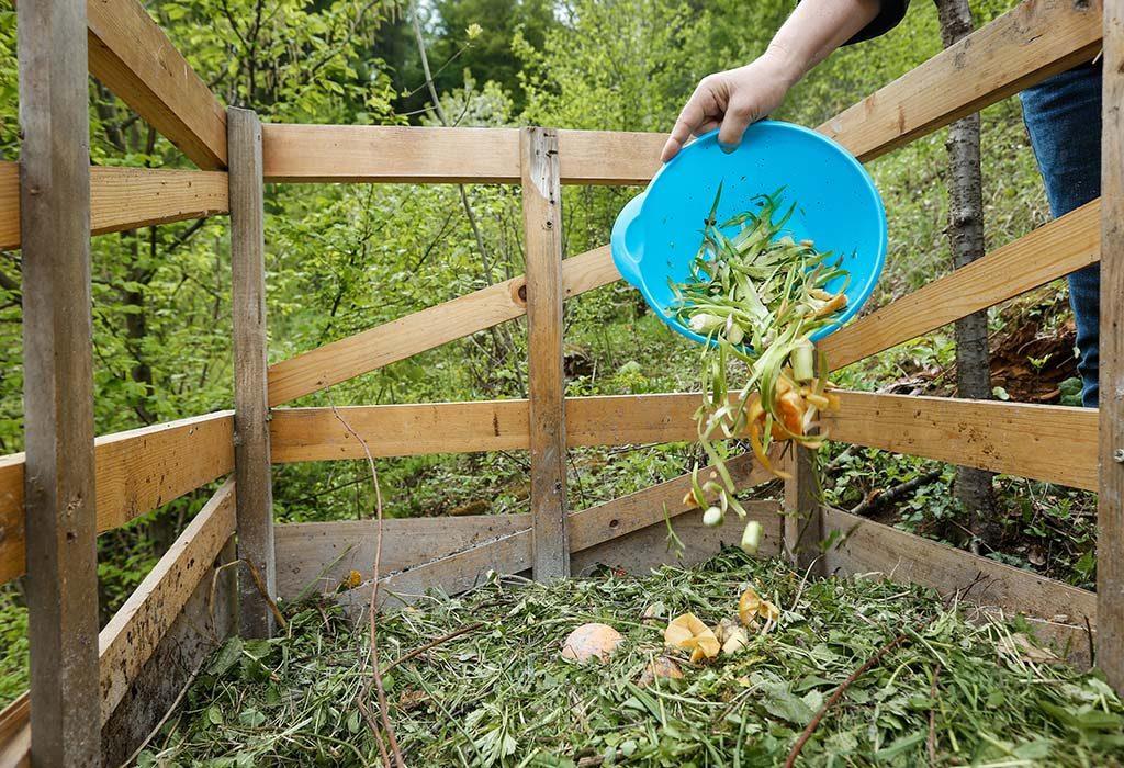Compost Your Kitchen Waste