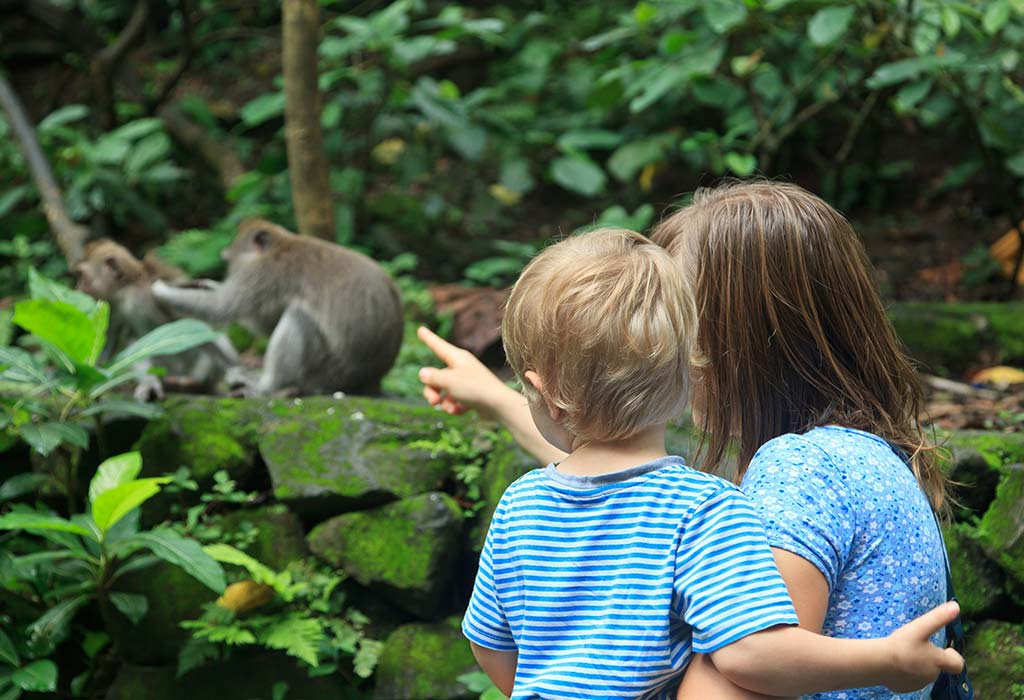 प्राणीसंग्रहालयाला भेट द्या