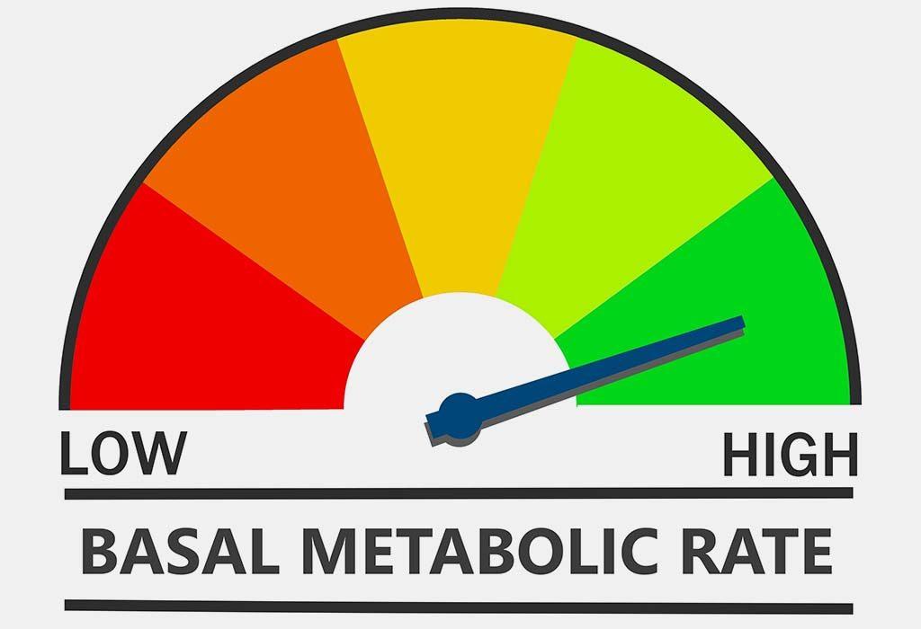 Improve Metabolism