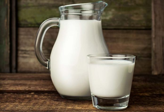 best time to drink milk morning or night