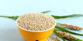 8 Nutritious Jowar Recipes You Must Try