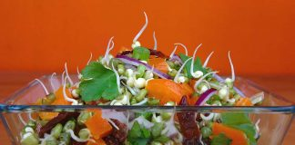 10 Healthy and Flavoursome Sprouts Recipes