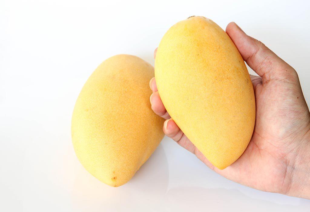 checking mango ripeness