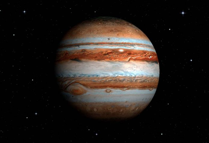 Jupiter plant facts and info for kids