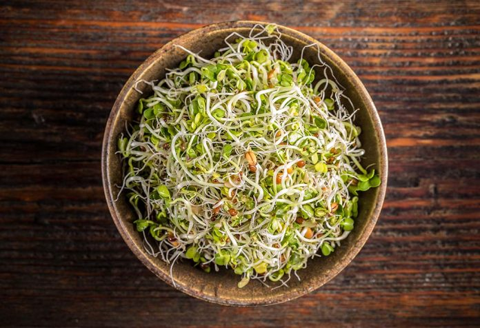 Benefits of Eating Sprouts That You Must Know