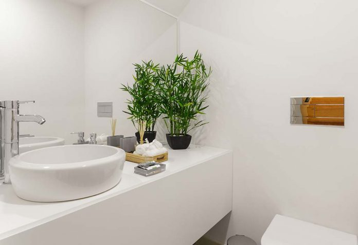 10 Bathroom Plants to Keep Your Space Bright and Cheery