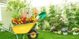 surprising benefits of gardening