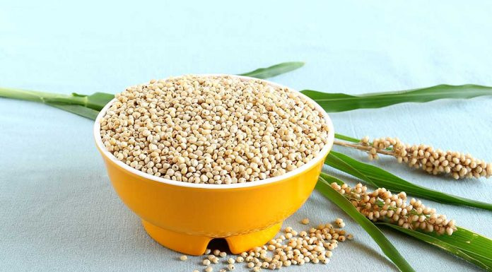 15 Benefits of Jowar (Sorghum) for Your Health