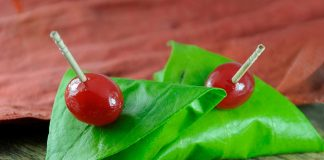 Benefits and Side Effects of Betel Leaf (Paan)