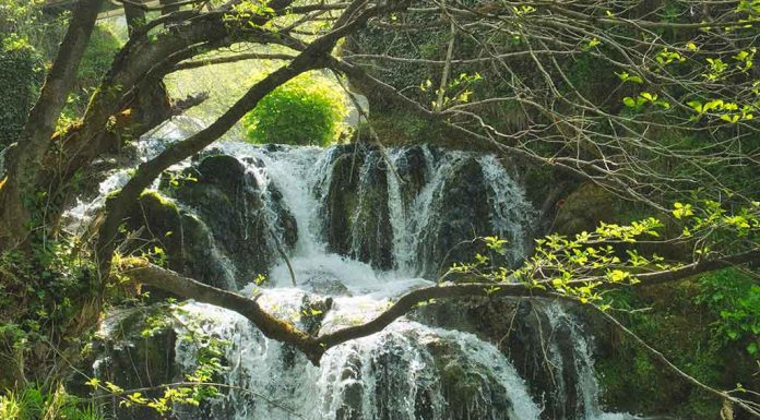 Breathtaking Waterfalls in India You Must Visit With Your Family