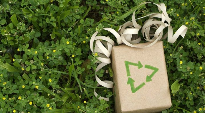 10 Eco-Friendly Gift Ideas – It's Time to Go Green