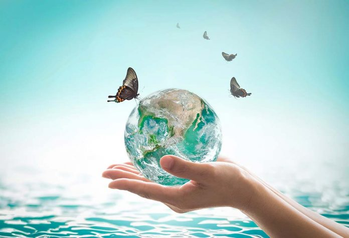 World Oceans Day - Interesting Facts and Activities for Kids